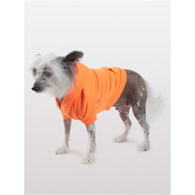 AMERICAN APPAREL Sweat à capuche pour chien - orange