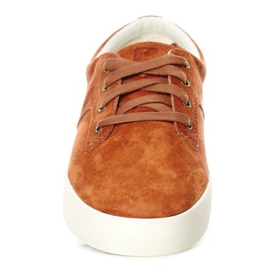 POINTER Tennis en cuir - cognac