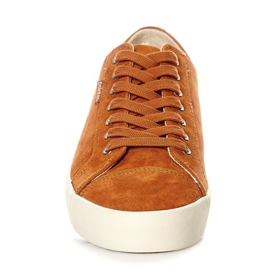POINTER Baskets en cuir - cognac