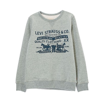 LEVI'S KIDS 2 Horses - Sweat-shirt - gris chine