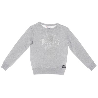 REDSKINS Sweat polaire - gris