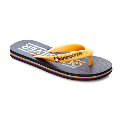 zapatillas Quiksilver Molokai Wordmark Chanclas multicolor