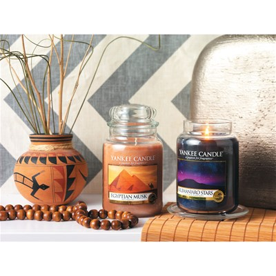 YANKEE CANDLE Musc Egyptien - Lot de 4 tartelettes parfumées - orange