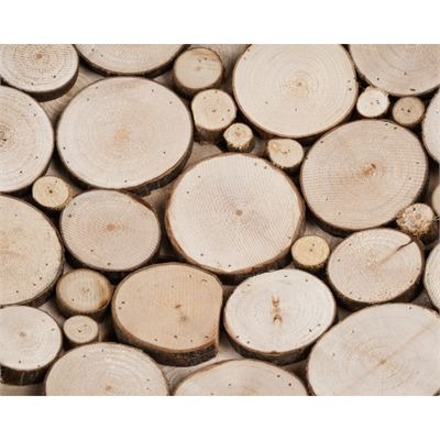 MADURA Timber - Coupe en bois naturel